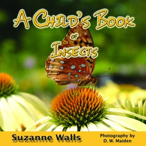 Insect book cover by Sue Walls