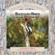 BACKYARD BIRDS book cover