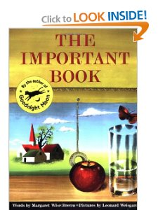 The Important book _book cover_